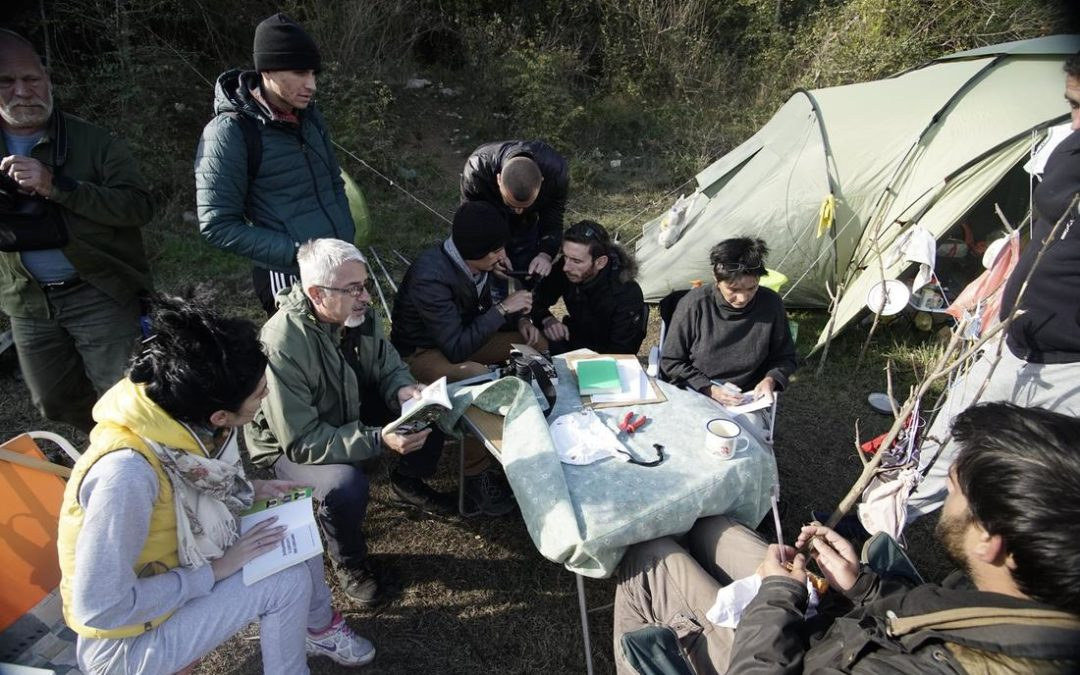 Velipoja bird banding camp