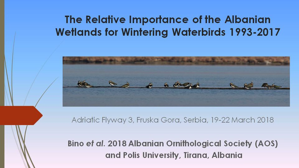 AOS in Adriatic Flyway Conference