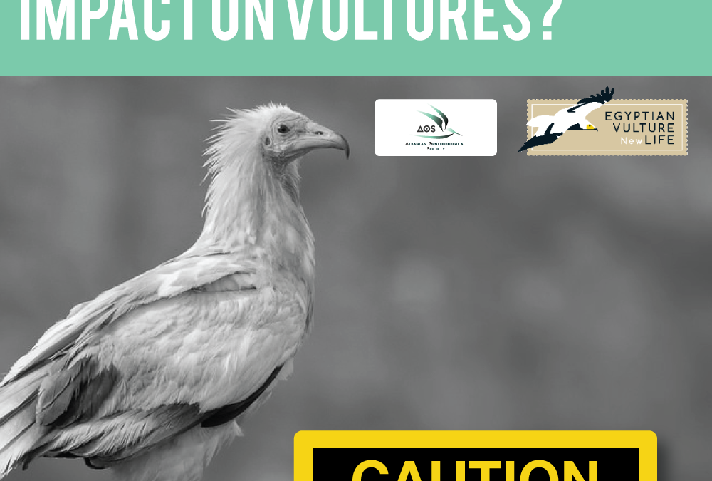 Investigate the impact of agricultural chemicals as poisoning agents for the Egyptian Vulture.