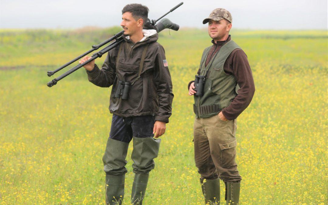Hunters and Ornithologists, joint monitoring of Common Quail in Tërbufi plain.