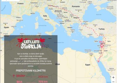 Figure no.2: The journey of Bela, a White Stork tagged in Slovenia - Slovenia - Sinai Peninsula and back