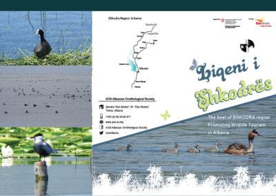 The best of Shkodra region Promoting Wildlife Tourism in Albania (Shkodra Lake)