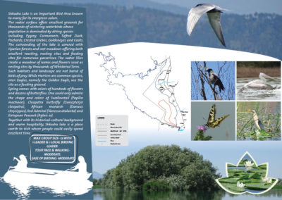 The best of Shkodra region Promoting Wildlife Tourism in Albania (Shkodra Lake)_2