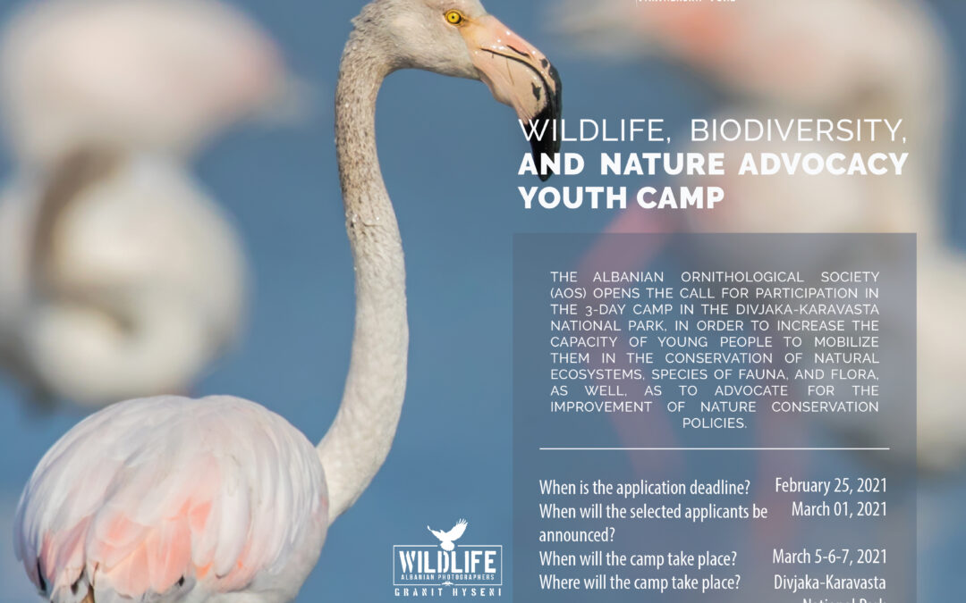 WILDLIFE, BIODIVERSITY, AND NATURE ADVOCACY YOUTH CAMP